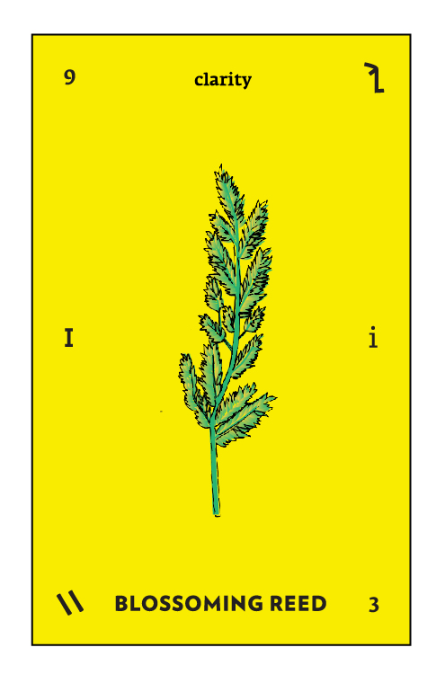 Type Tarot Cards